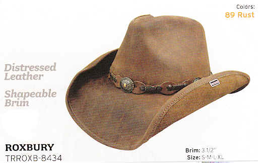 Leather hat by Stetson hats 0a34e186227
